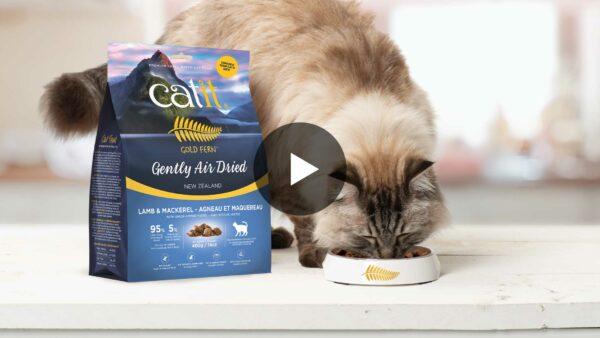 Catit Gold Fern video