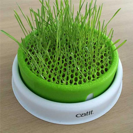 grass-planter-instructions-step-9