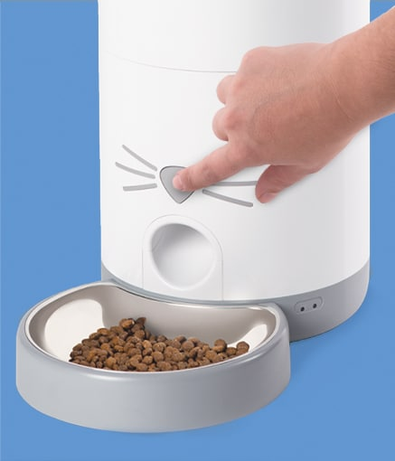 Dispense food from feeder
